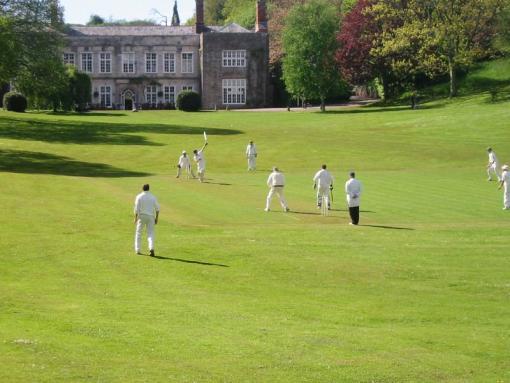 Cricket at Cockington Court