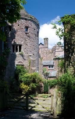 Tiverton Castle View
