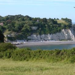 Seaton Bay from Beer Head