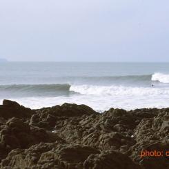 North Devon Reef