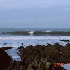 Surfer at North Devon Reef Break