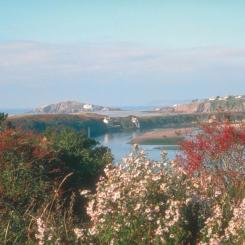 Burgh Island and the River Avon