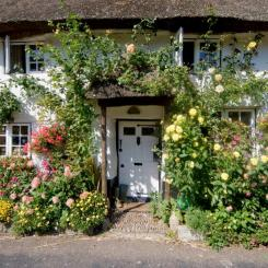 Cottages / Self catering