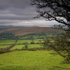 West Dartmoor View