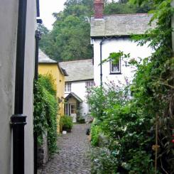 Clovelly - Flowery Lane