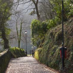 Path Down to Clovelly
