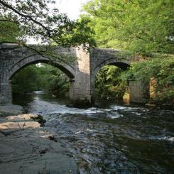 River Dart Bridge near Holne Chase