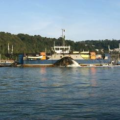 River Dart Ferry