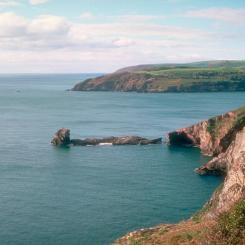 Durl Head - Brixham