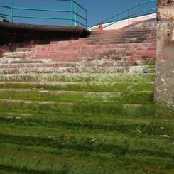 Beach Steps - Goodrington