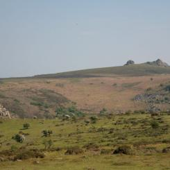 View to Haytor