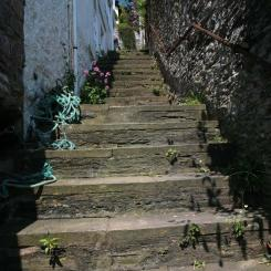Kingswear Steps