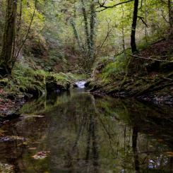 River Lyd - Lydford Gorge