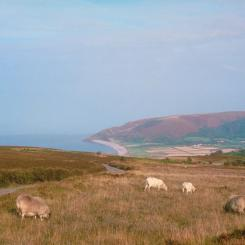 Porlock from Exmoor