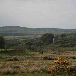 Dartmoor near Postbridge