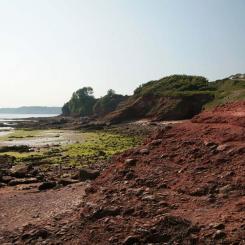 Red Cliffs - Paignton