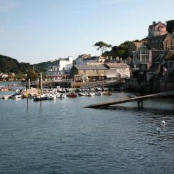 Salcombe Riverside