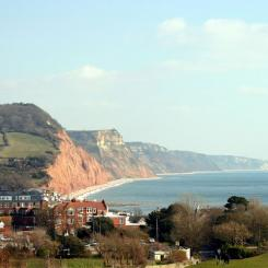 Sidmouth cottages