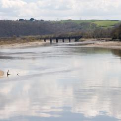 River Torridge Near Bideford