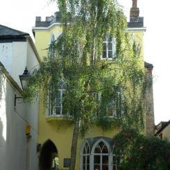 Yellow House - Totnes