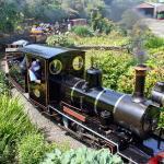 Exmoor Steam Railway