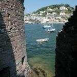 Kingswear Glimpsed from Bayard's Cove Fort
