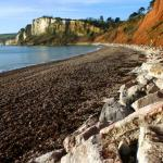 Beer Cliffs from Seaton beach