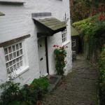 Clovelly cottage - flowers and steps