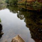 River Dart near Dartmeet