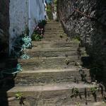 Kingswear Steps