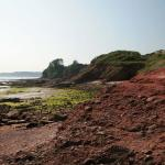 Red Cliffs - Paignton