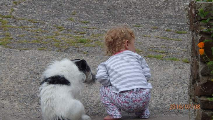 Family dog and grand daughter