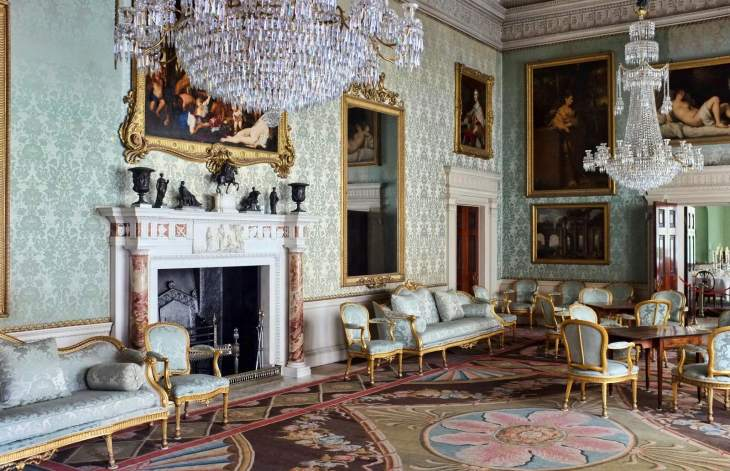Saltram interior - The Salon