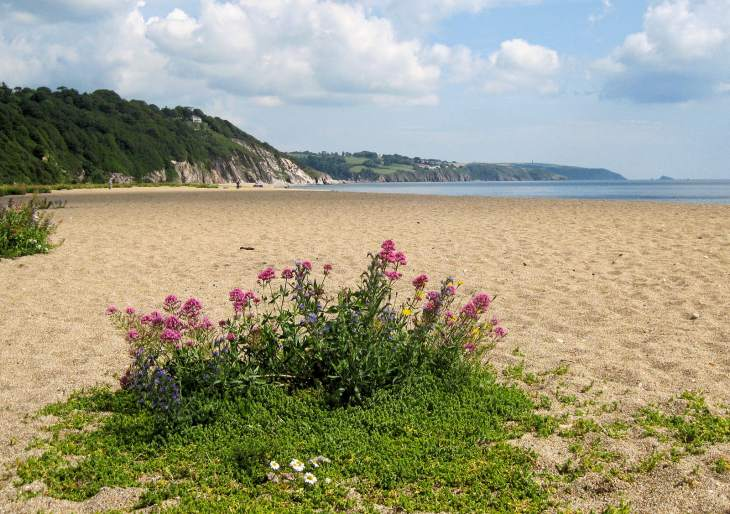 Strete Gate beach
