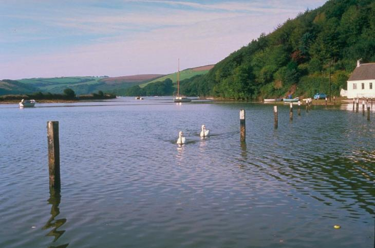 River Avon at Aveton Gifford