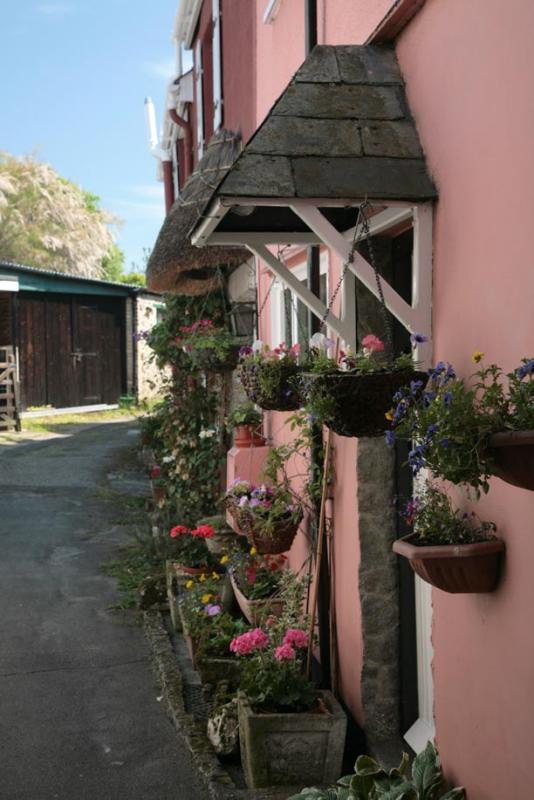 Hanging Baskets - Bovey Tracey