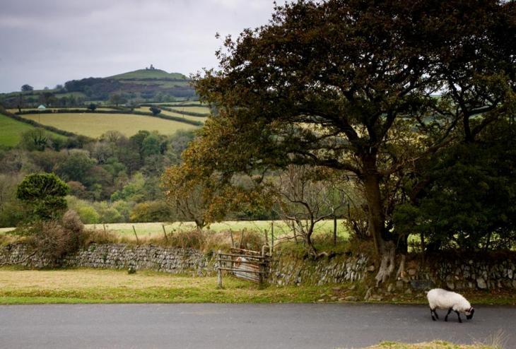 Brentor View