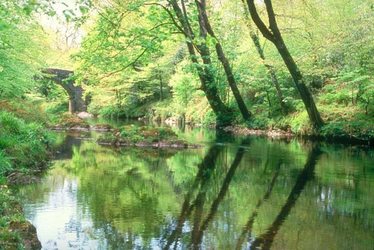 Holne Bridge - River Dart