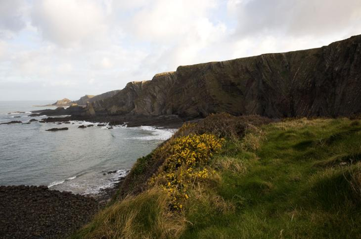 Hartland Cliffs