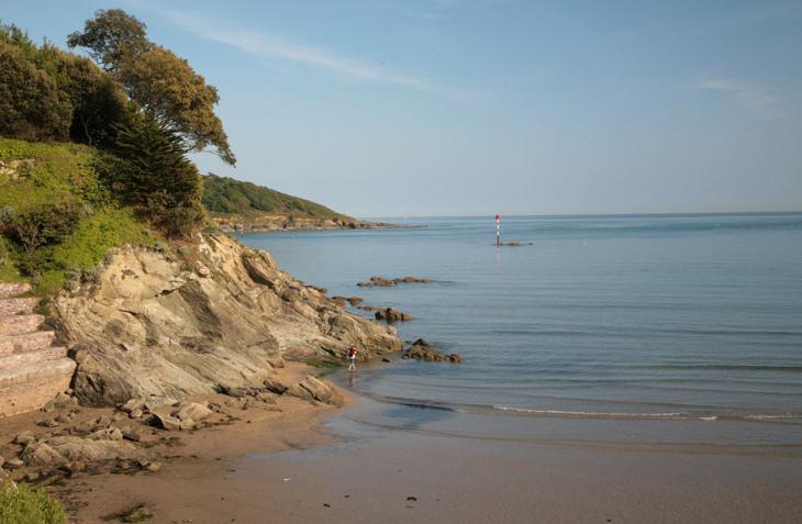 North Sands Beach - Salcombe