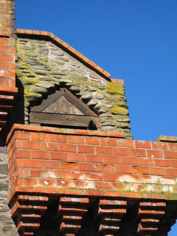 Rhenish Tower - Lynmouth