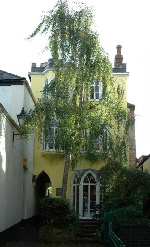 Yellow House - Totnes